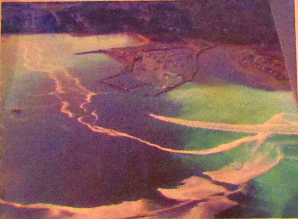 Aerial view of herring spawn